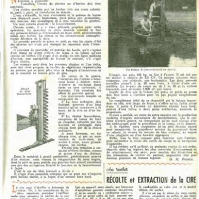 Rustica-Faucardement-img.jpg